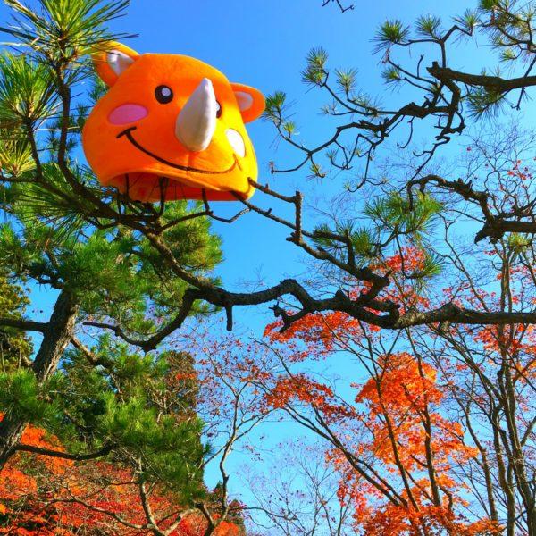秋と空とツノっち。 芸術館満載💖いつもよりツノっちが誇らしげに見えるね∩^ω^∩